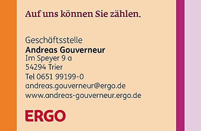 FSV Sponsor Ergo